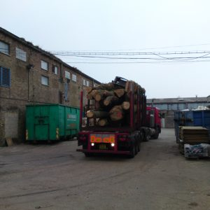 oak-tree-felling-9