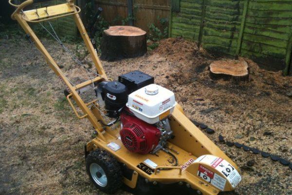 stump-grinding-1