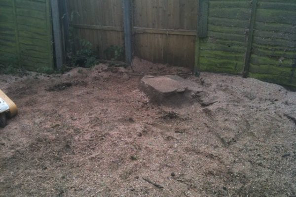 stump-grinding-5
