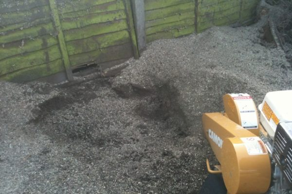 stump-grinding-6